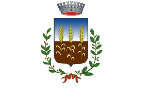 COMUNICATO DEL CONSIGLIO DI RAPPRESENTANZA DEI SINDACI PER CASI POLMONITE
